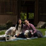Sesiones de mascotas, sesiones de perros, cuidadores de perros, comida de perro, fotos profesionales, pictures (3)